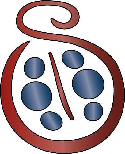 Coccinelle SAVIE