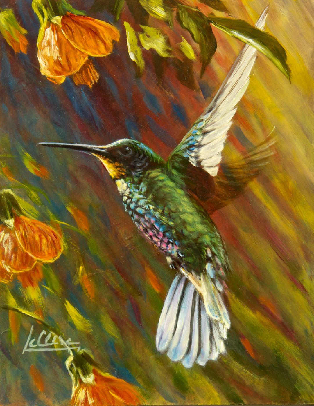 L'art du Colibri